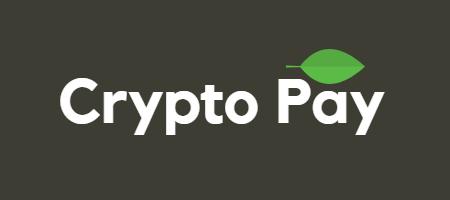 Crypto pay